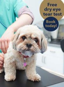 Free dry eye tear test offer